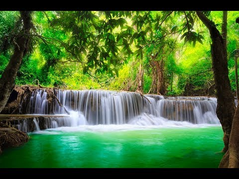 🔴 Study Music 24/7: Concentration Music, Relaxing Music, Sleep Music, Meditation Music