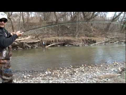 rainbowtrout - Tom Waldock fishing in Oshawa Creek south of the train tracks. Filmed and produced by WaCu Productions with co-operation from Hooked Young. www.hookedyoung.c...