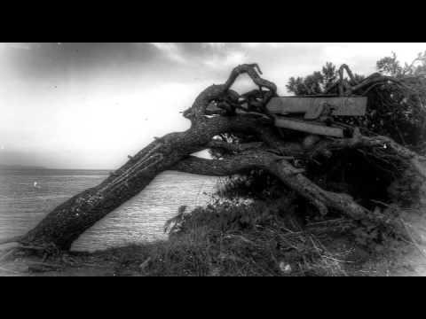 Woven Hand - Last Fist lyrics