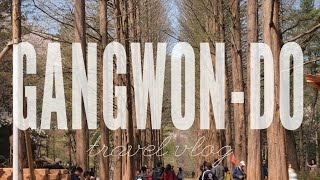 Chuncheon-si South Korea  city photo : Gangwon-do, South Korea | Travel Vlog ( Part 1)