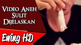 Video 5 Video Aneh yang Sulit Dijelaskan - Part 4 | #MalamJumat - Eps. 64 MP3, 3GP, MP4, WEBM, AVI, FLV November 2018