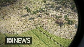 Video The Sulawesi quake turned rice paddies into deadly quicksand MP3, 3GP, MP4, WEBM, AVI, FLV Oktober 2018