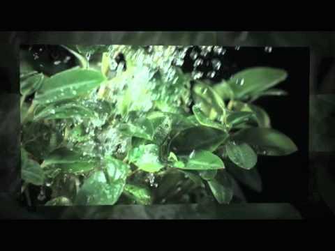 Silinder - Drama Tank (Original / Inkfish / Alter Breed mixes)