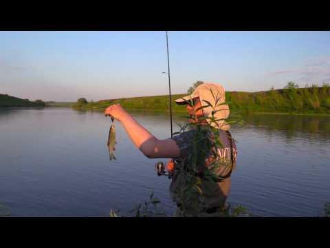 рыбалка в липецкой области весной видео