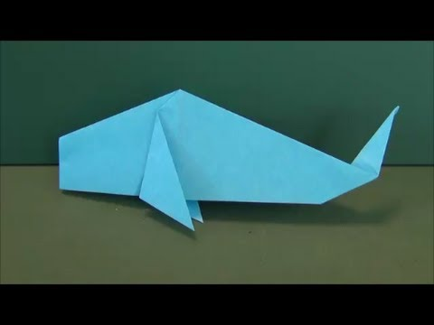 Easy Tutorial - 034 -- Carp