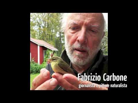 Artisti per Natura 2015
