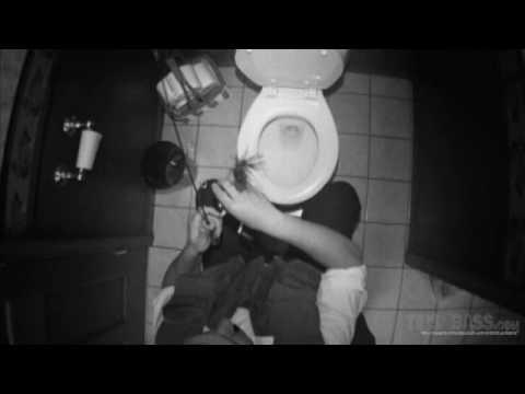 Toilet Fishing TipsNBass.com