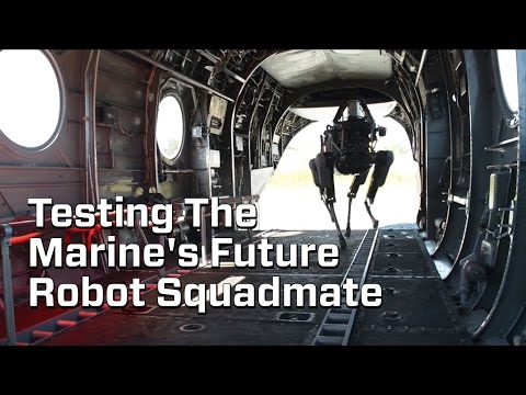 """Video Marine's Test Out Their Robot """"Dog"""" download in MP3, 3GP, MP4, WEBM, AVI, FLV January 2017"""