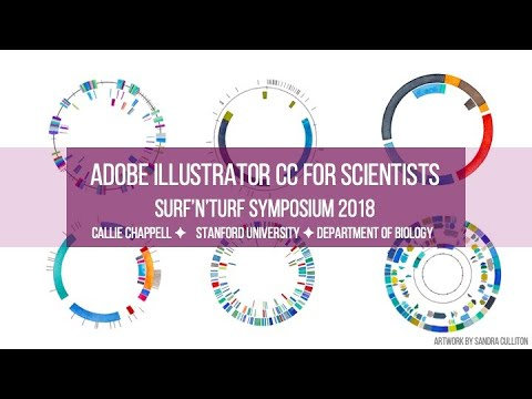 Adobe Illustrator For Scientists: Formatting A Poster Or Figure Panel
