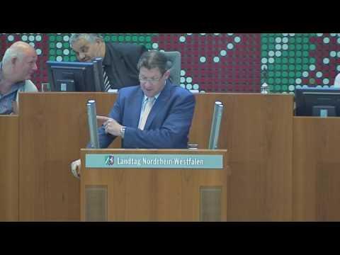 Dietmar Brockes (FDP): NRW wehrt sich gegen den vorze ...