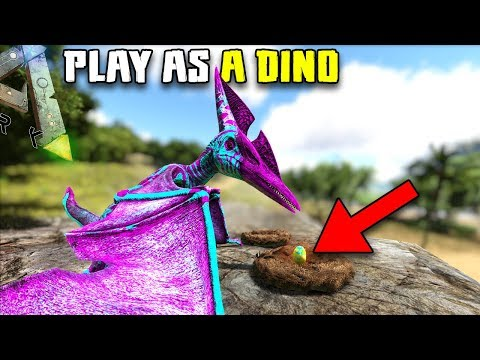 THE PTERANODON NESTS | PLAY AS A DINO | ARK SURVIVAL EVOLVED