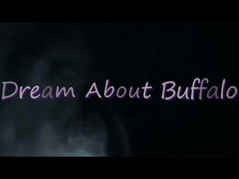 What Does It Mean When You Dream About  Buffalo