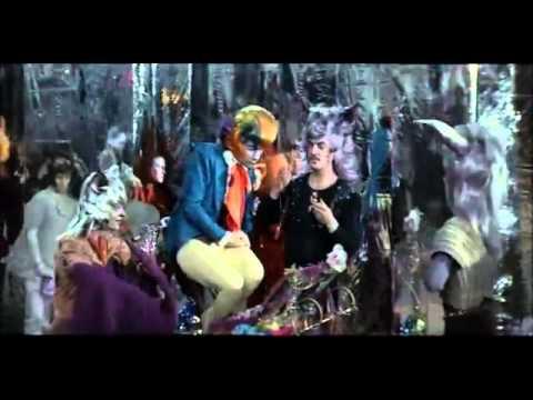Песня попугая - Попка не дурак!