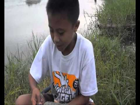 Fishing curse by casting technique with little frog as bait