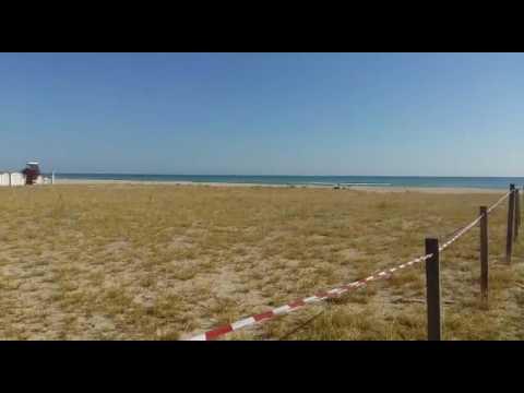 Alba Adriatica, nuova delimitazione per la spiaggia del fratino VIDEO