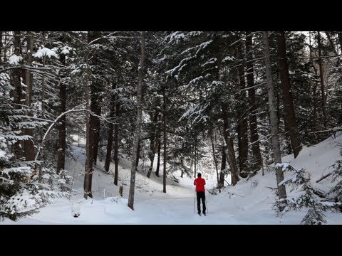 Cross Country Skiing - A Pure Michigan Winter