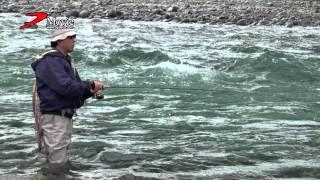黒部川 瀬のディープミノーイングで獲るサクラマスアングラー 斉藤 学
