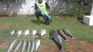 Kirinda Sri Lanka  City pictures : Fishing In Sri Lanka (Kirinda 05th and 06th Dec 2015)