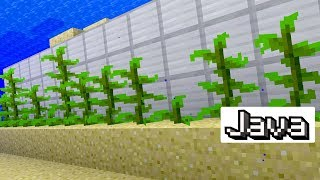 How to Make an Automatic Kelp Farm in Minecraft