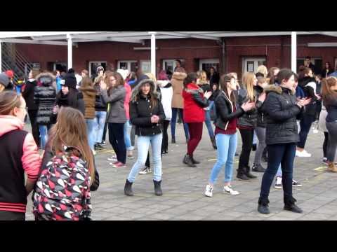 Collège Technique Saint-Henri Mouscron Flash Mob. (видео)