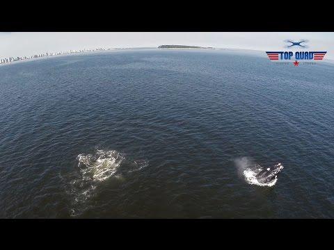 Punta Ballena Drone Video