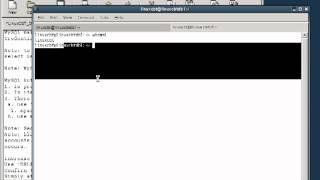 4 Mysql Database   Drop Anon