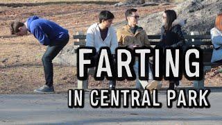 Video FARTING IN CENTRAL PARK MP3, 3GP, MP4, WEBM, AVI, FLV April 2018