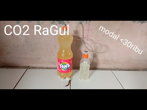#10 CO2 DIY Ragul (ragi gula) + diffuser ranting | DIY co2 with sugar & yeast