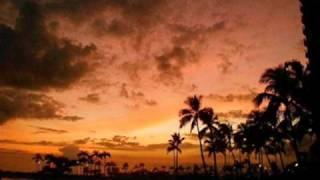Steven & Coconut Treez - Sunset Video