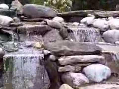 pondhunter video