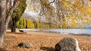 Wanaka New Zealand  city photos gallery : Wanaka things to do, tours and attractions - Must Do New Zealand