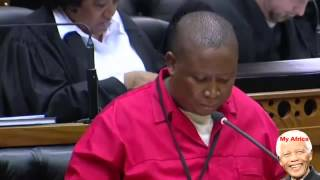 Julius Malema Blames Zuma And His Son For Xenophobic attacks