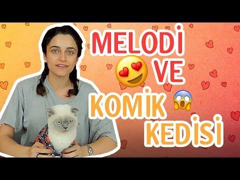 YouTuber Melodi ile Komik Kedi Vidyosu