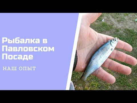 рыбалка в павловском-посаде