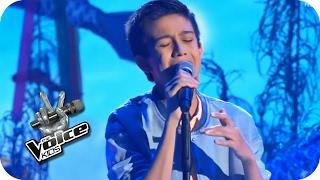 Alicia Keys - If Ain't Got You (Lukas) | Finale | The Voice Kids 2016 | SAT.1