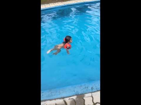 Video Nia blajar berenang download in MP3, 3GP, MP4, WEBM, AVI, FLV January 2017