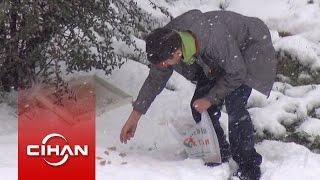 Küçük çocuğun kar altında kuşları beslemesi kamerada
