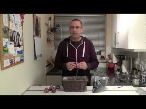 How to plant indoor hyacinth bulbs [video]