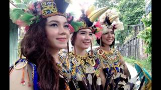 Download Video Kecantikan wanita Dayak Kalimantan MP3 3GP MP4