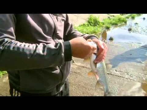 рыбалка в перми фото и цены