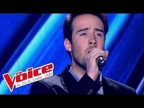 Daniel Balavoine – SOS d'un terrien en détresse   Quentin   The Voice France 2013   Blind Audition