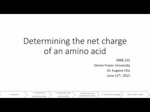 Charge of an amino acid
