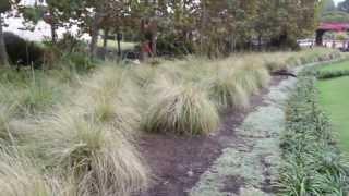 #981 Central Garden - Der Garten beginnt