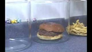 The Shocking Truth About  McDonald's Burgers And Fries. - YouTube.flv Video