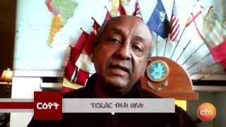 Reyot: Interview with Professor Brook Hailu