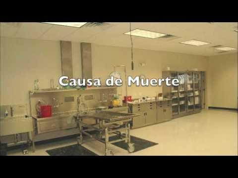 Autopsia Forense.m4v