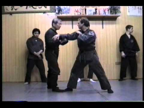 Hatsumi Tougher Bujinkan Training Days 1