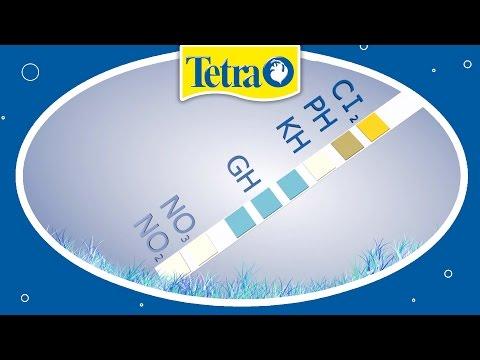 Wasserwerte im Aquarium testen: TETRA 6in1 Test