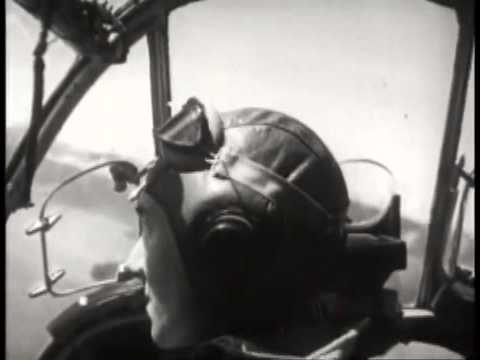 WWII: The Story of a Beaufighter
