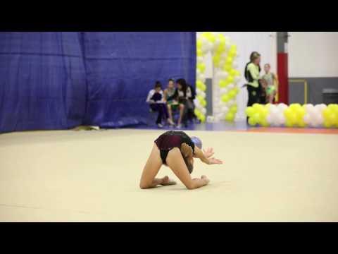 Gymnastics competition 2017 ball (видео)